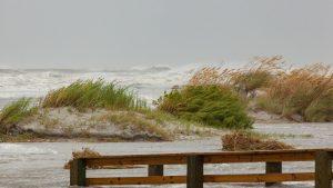 Coastal Resiliency